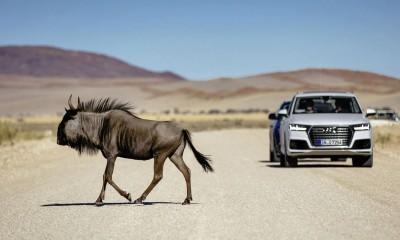 Audi Q7 vernetztes Auto mit Android und Apple iOS