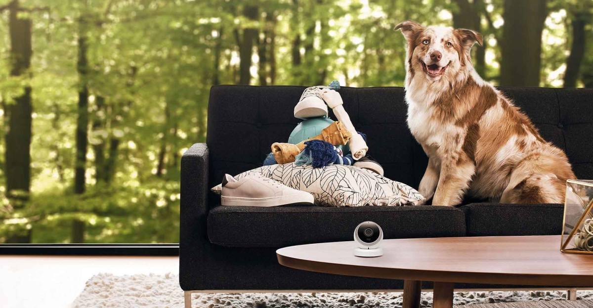 harmony mit ifttt verbinden tv und hifi anlage automatisch ausschalten vernetzte welt. Black Bedroom Furniture Sets. Home Design Ideas