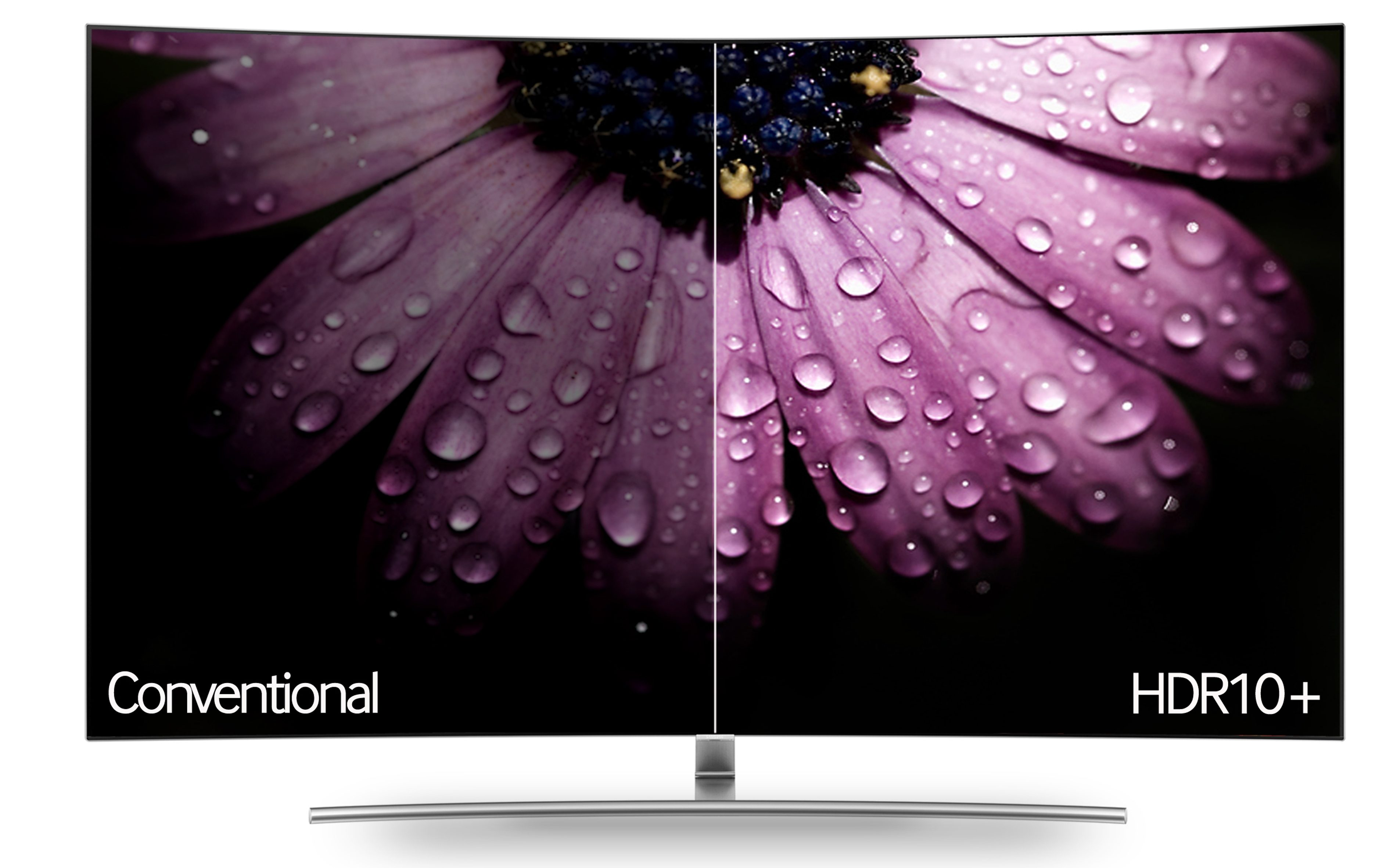 Kooperation zu HDR10+: Samsung Amazon Conventional HDR10plus